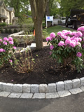 Soldier Course Cobblestone Edge with Cobblestone Border Set In Hot Top Lexington