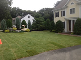 Sod Lawn Install in Lexington MA