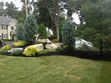 Sod Lawn with Black Mulching and Plantings Lexington MA